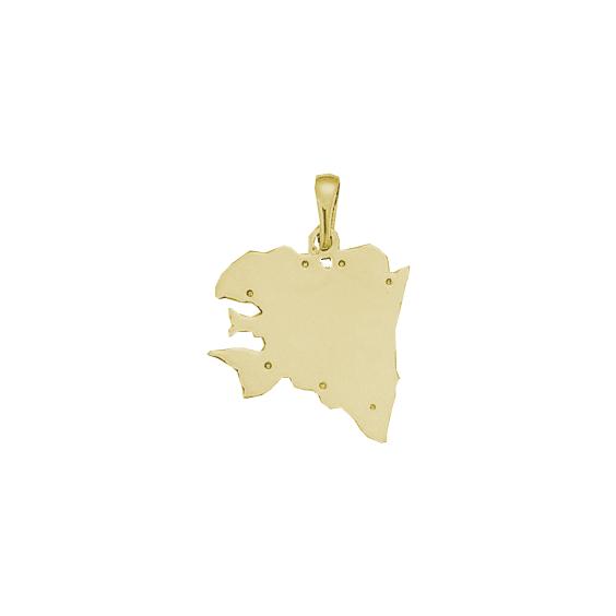 Pendentif carte Bretagne Ancestrale Or 9 carats jaune - 29 MM - La Petite Française
