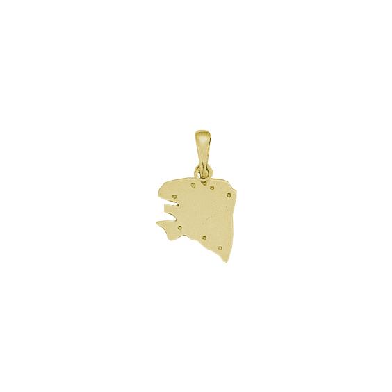 Pendentif carte Bretagne Ancestrale Or 9 carats jaune - 22 MM - La Petite Française