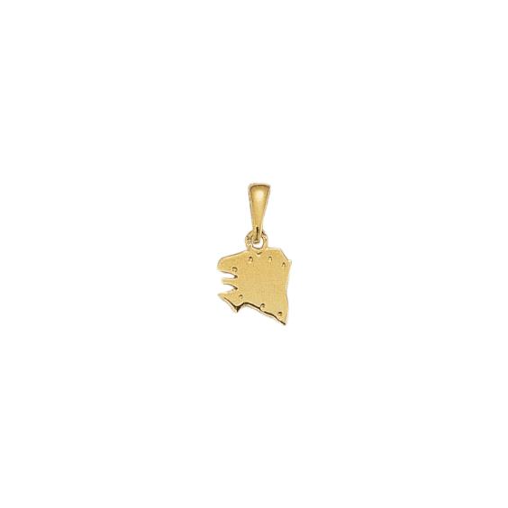 Pendentif carte Bretagne Ancestrale Or 18 carats jaune - 18 MM - La Petite Française